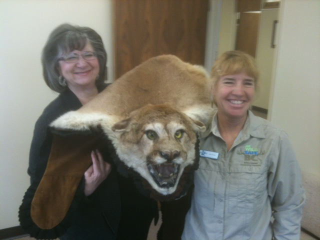 cougar hide with mary