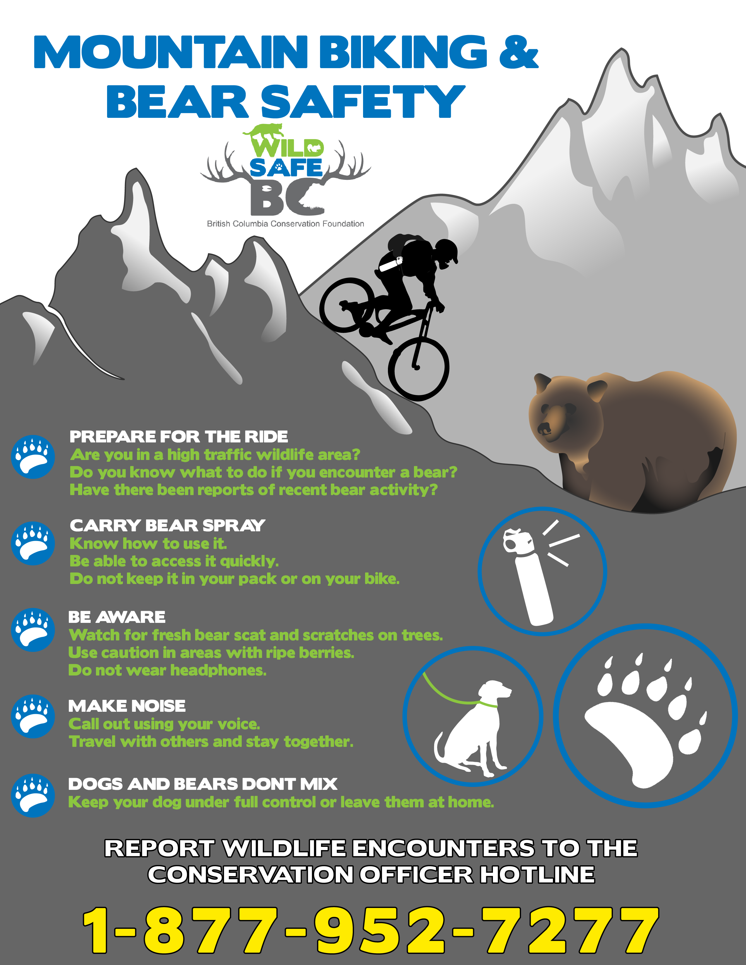 Mountian Bike Bear POSTER2_31jan2019